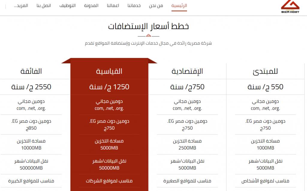 أشهر شركات استضافة مواقع مصرية