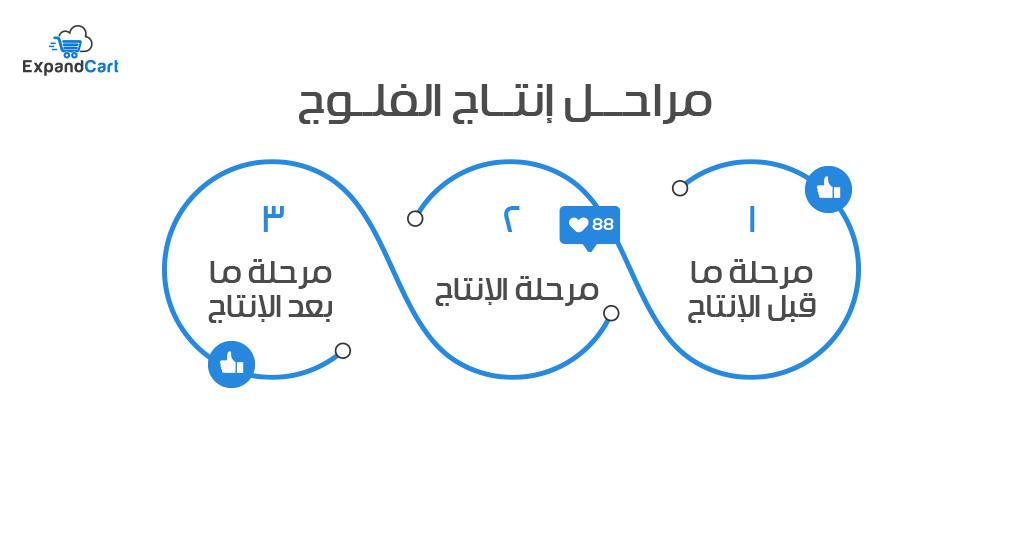 مراحل إنتاج الفلوج